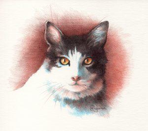 retrato de Gato por Cristina Figueroa